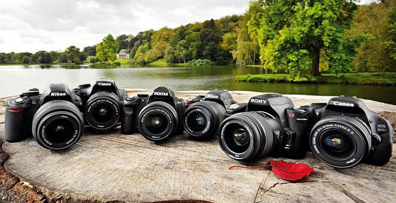 Лучшие бюджетные зеркальные фотоаппараты
